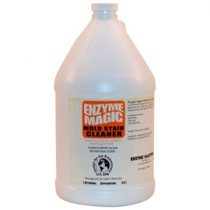Mold Cleaner - 1 Gallon